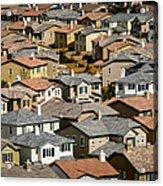 The Neighborhood Acrylic Print