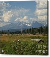 The North West  Acrylic Print