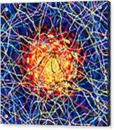 The Nucleus Acrylic Print