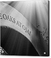 The Oaks At Ojai Acrylic Print