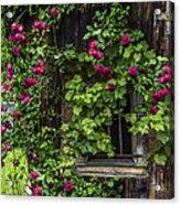 The Old Barn Window Acrylic Print