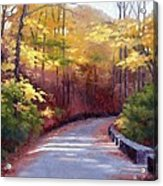 The Old Roadway In Autumn II Acrylic Print