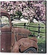 The Old Truck And The Crab Apple Acrylic Print