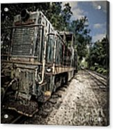 The Old Workhorse Acrylic Print