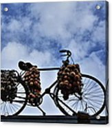 The Onion Bicycle Acrylic Print