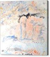 The Orange Bluffs Acrylic Print
