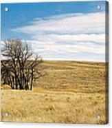 The Other Colorado Acrylic Print