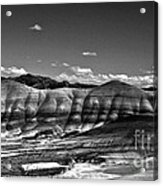 The Painted Hills Bw Acrylic Print