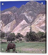 The Painters Palette Jujuy Argentina Acrylic Print