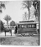 The Palm Beach Trolley Acrylic Print