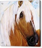 The Palomino Acrylic Print
