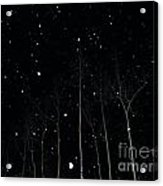 The Park In Winter Acrylic Print