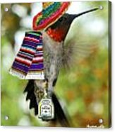 The Partying Hummer Acrylic Print