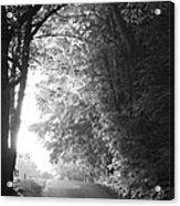 The Path Ahead Acrylic Print by Andrew Soundarajan