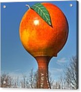 The Peach Acrylic Print