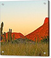The Peak And Cardon Cacti In The Sunset In San Carlos-sonora Acrylic Print