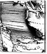 The Peeling Birch Acrylic Print