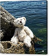 The Philosopher - Teddy Bear Art By William Patrick And Sharon Cummings Acrylic Print by Sharon Cummings