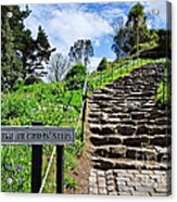 The Pilgrims' Steps Acrylic Print