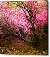 The Pink Forest Acrylic Print