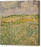 The Plain At Auvers Acrylic Print by Vincent Van Gogh