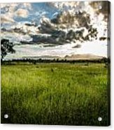 The Plains Of Africa Acrylic Print