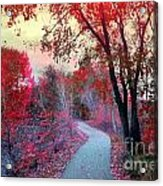 The Pondering Path Acrylic Print