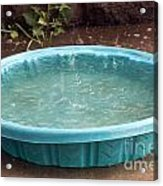 The Pool Acrylic Print