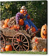 The Pumpkin Farmer Acrylic Print