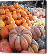 The Pumpkin Stand Acrylic Print by Richard Reeve