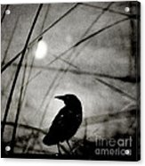 The Raven And The Orb Acrylic Print by Sharon Coty