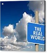 The Real World Acrylic Print