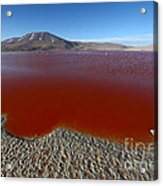The Red Lagoon Acrylic Print
