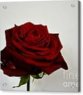 The Red Side  Acrylic Print