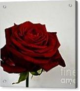The Red Side  Acrylic Print by Aqil Jannaty