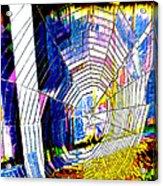 The Refracted Cobweb Acrylic Print