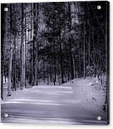 The Road Less Traveled Acrylic Print by Paul Herrmann