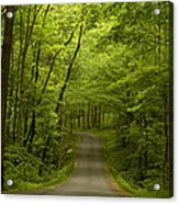 The Road Less Travelled Acrylic Print