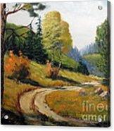 The Road Not Taken Acrylic Print