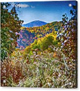 The Road To Cataloochee On A Frosty Fall Morning Acrylic Print