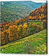The Road To Glady Wv Acrylic Print