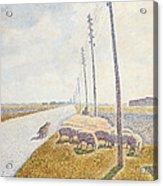 The Road To Nieuport Acrylic Print