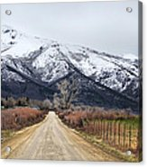 The Road To Soldier Creek Acrylic Print