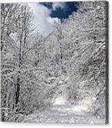 The Road To Winter Wonderland Acrylic Print