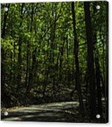 The Roads Of Alabama Acrylic Print