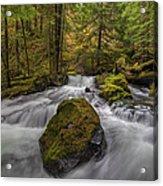 The Rock At Panther Creek Acrylic Print