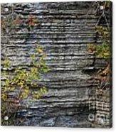 The Rock Acrylic Print