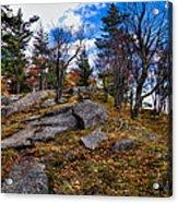 The Rocks Above Eagle Bay IIi Acrylic Print