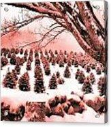 The Rocks In Winter Acrylic Print