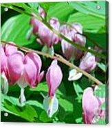 The Romance Flower Acrylic Print
